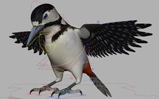 woodpecker_model_320_200